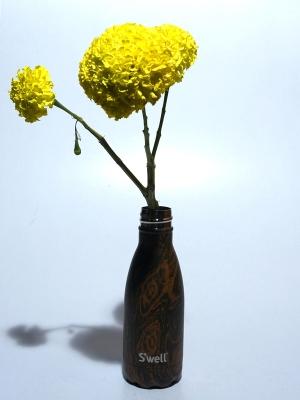Swell Bottle 9oz  Wenge Wood
