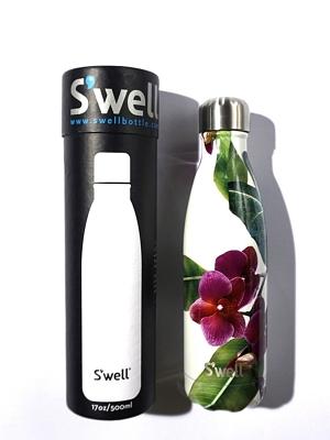 Swell Bottle Cattleya